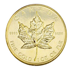 Gold Canadian Maple